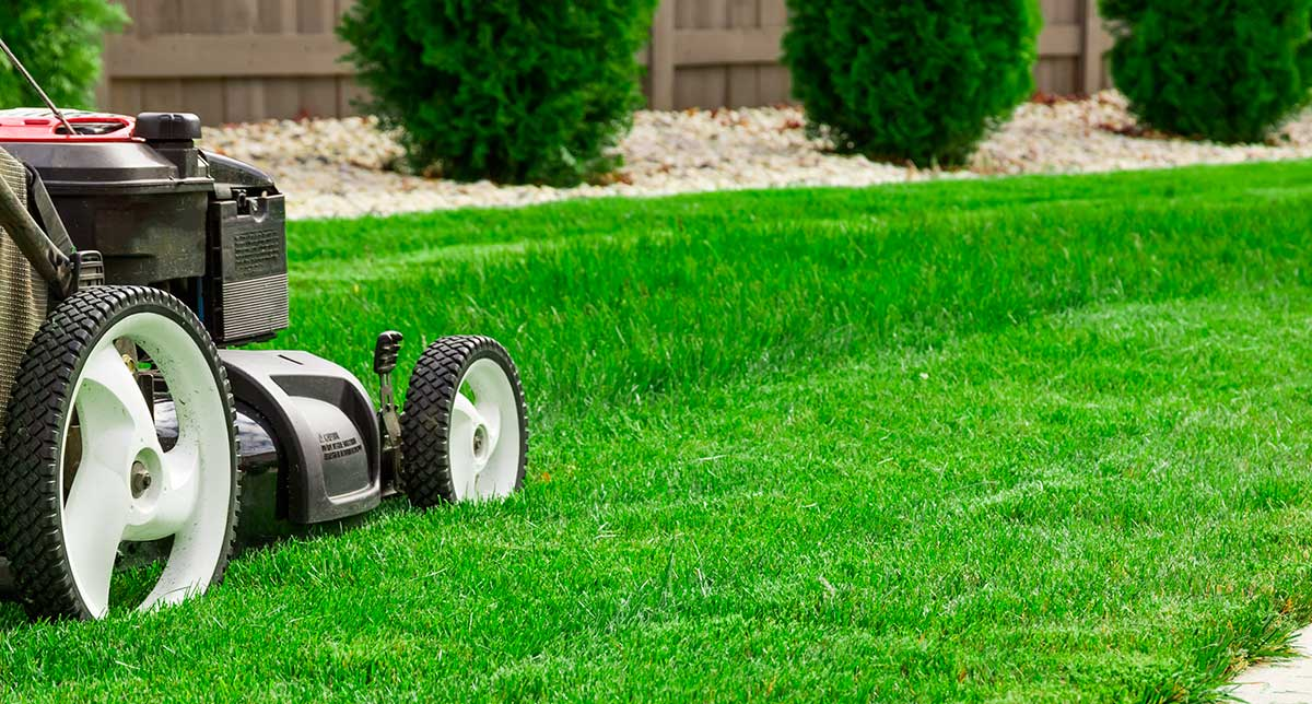 Keeping Up With Lawn Care