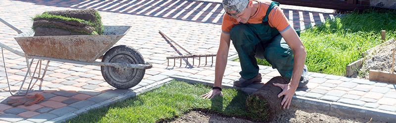 Best Landscaping Contractor in Seattle WA