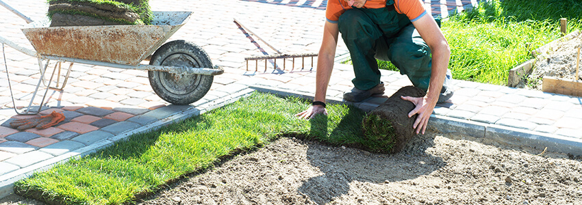 YOU GET A COMPLETE LANDSCAPING SERVICE