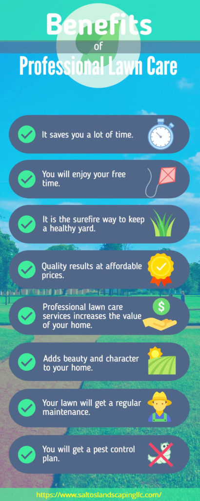These Are the Main Benefits of Our Professional Lawn Care Services
