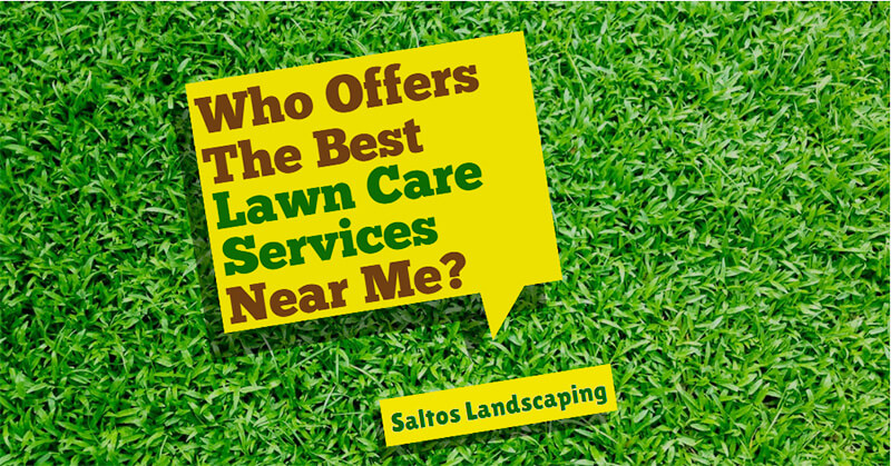 Who Offers the Best Lawn Care Services Near Me?