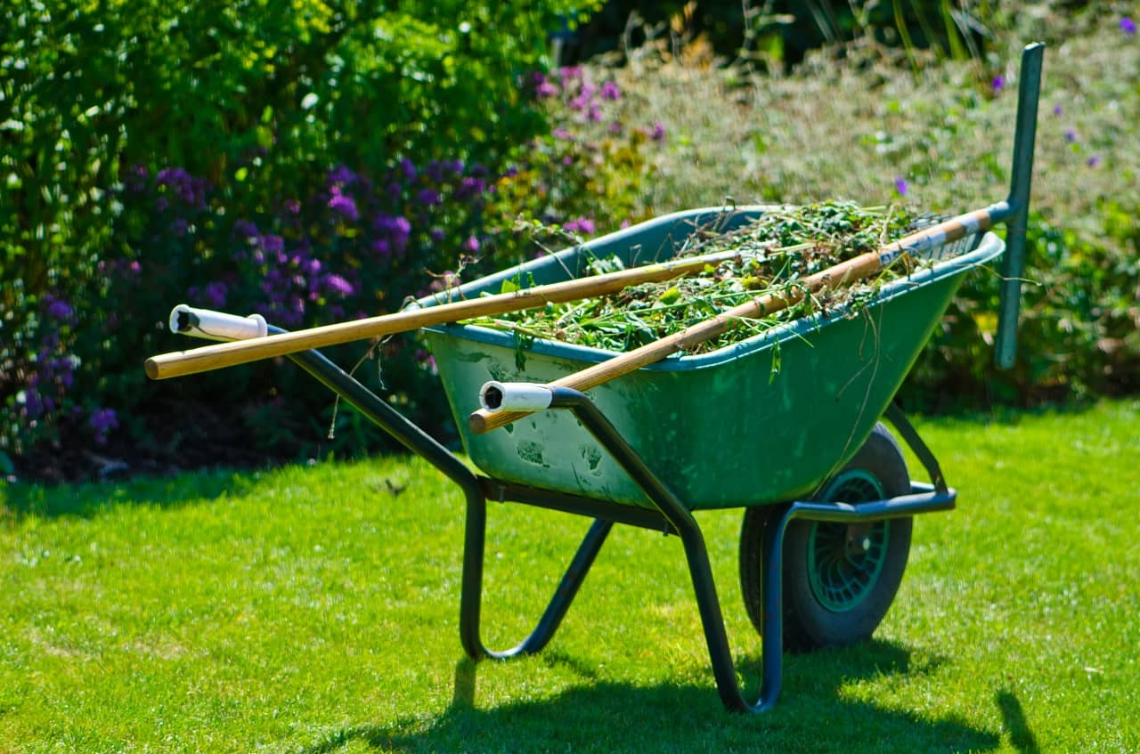 Lawn Maintenance Program