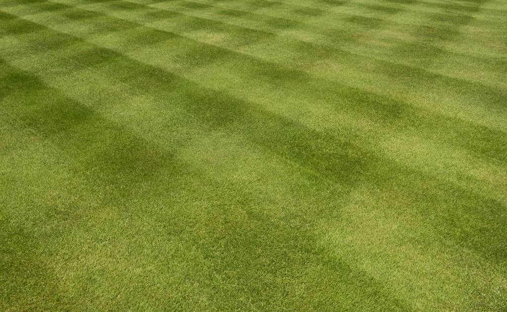 How To Mow a Checkerboard Grass Pattern
