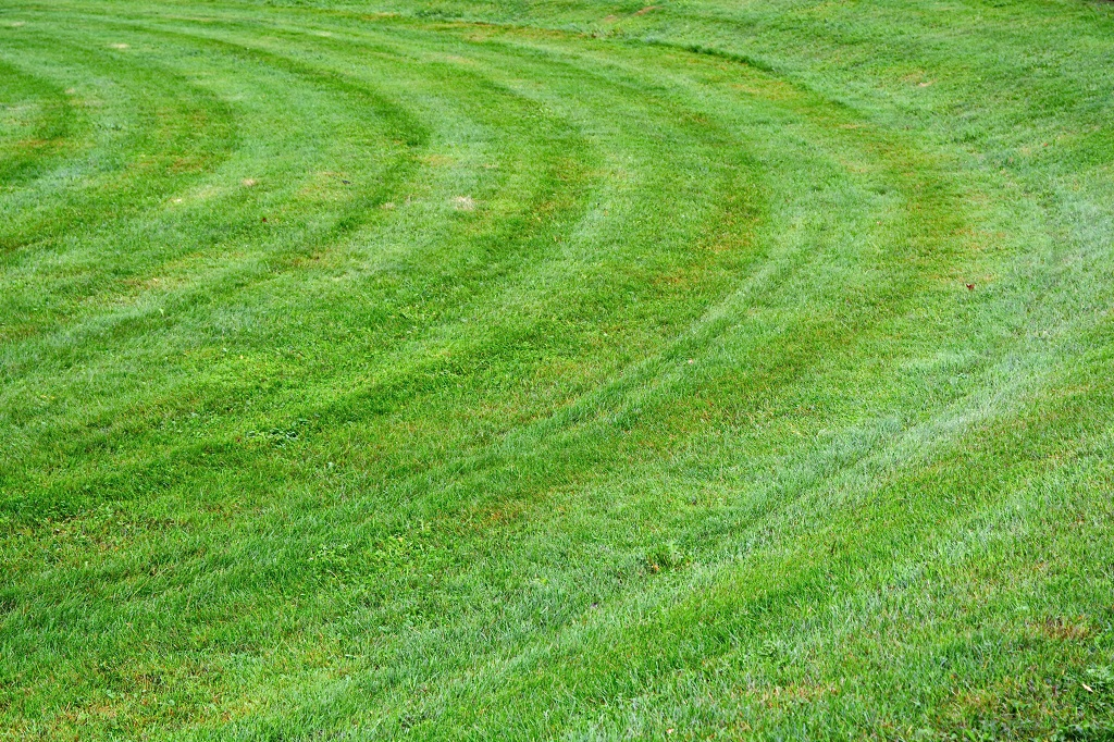 How To Mow a Circular Grass Pattern